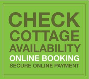 llandegla holiday cottage for rent